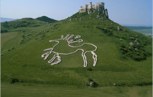 The Geoglyph of Celtic Horse